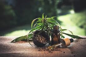 Top-Notch Health Benefits Offered By Consuming CBD Oil!!